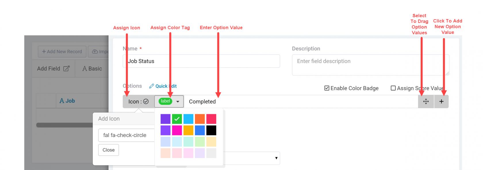 enter-option-values.png